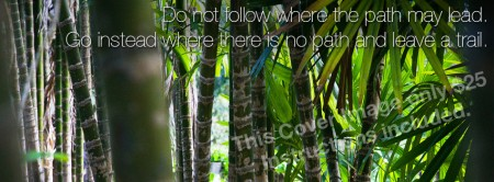 """Facebook Cover Image """"Bamboo"""""""