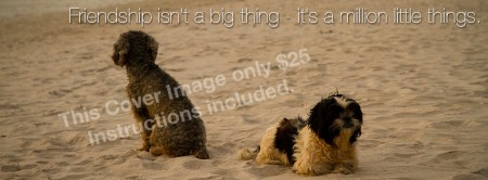 """Facebook Cover Image """"Beach Dogs"""""""