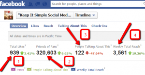 Insights on Your Facebook Business Page - Keep It Simple Social Media